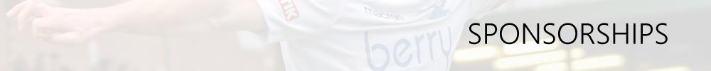 Salisbury FC SPONSORSHIPS banner